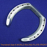 World Racing Plate