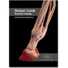 DISTAL LIMB POCKET GUIDE -A E
